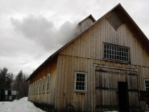 Read more about the article Sugar Happy | Vermont Maple Syrup