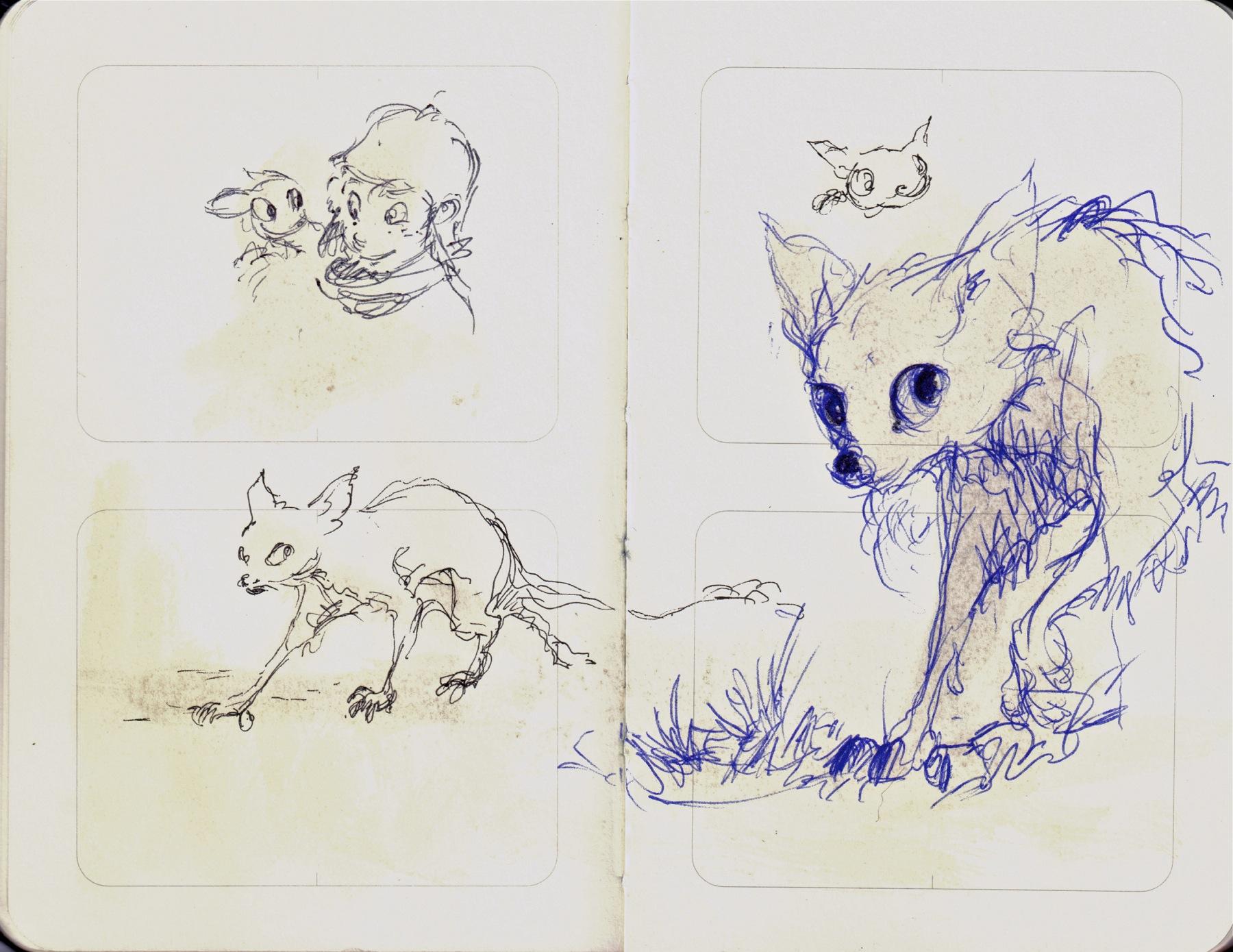 more cat bat