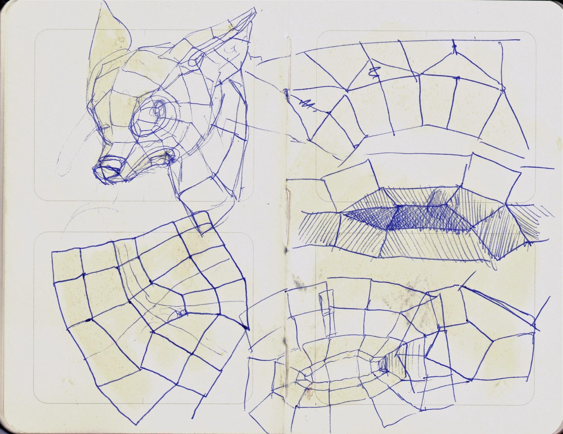 cat bat topology