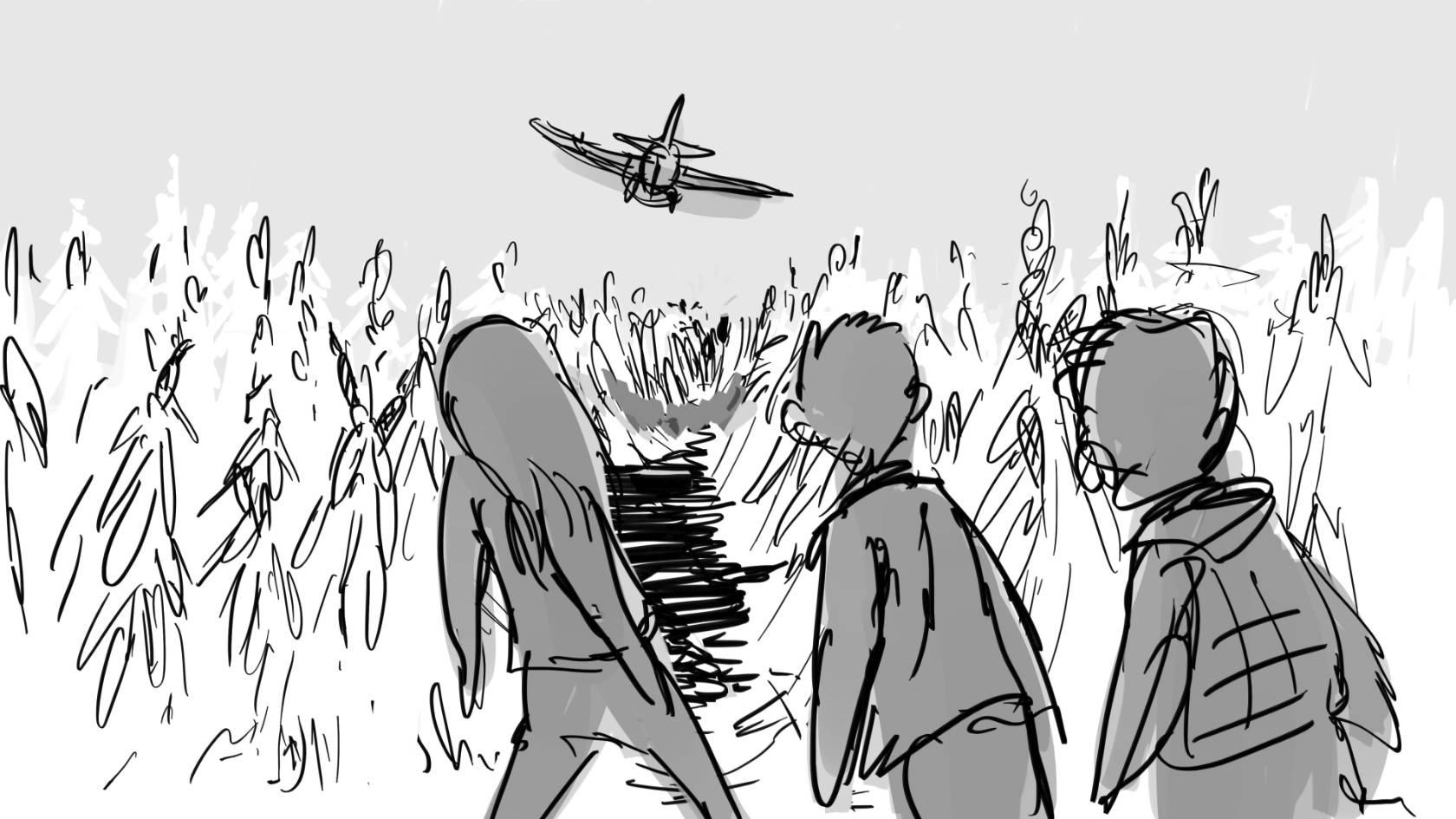 cornfield  tydd