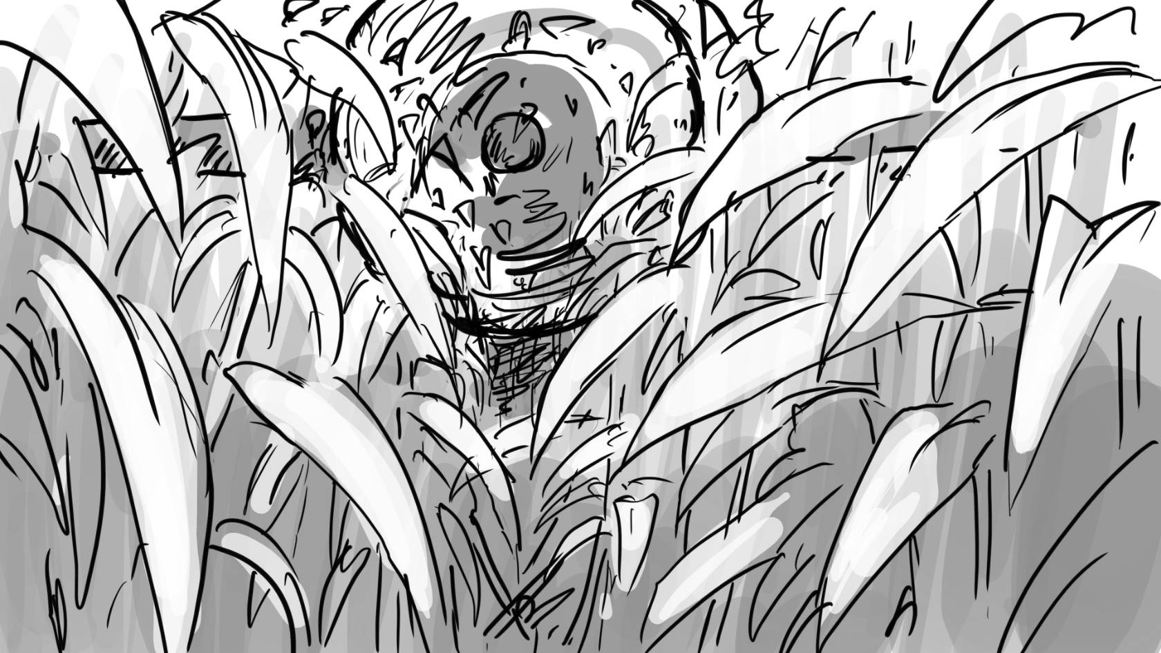cornfield  kixylf