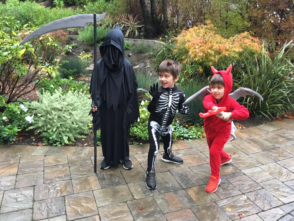 Halloween costumes 2016 for the Sheehy Boys