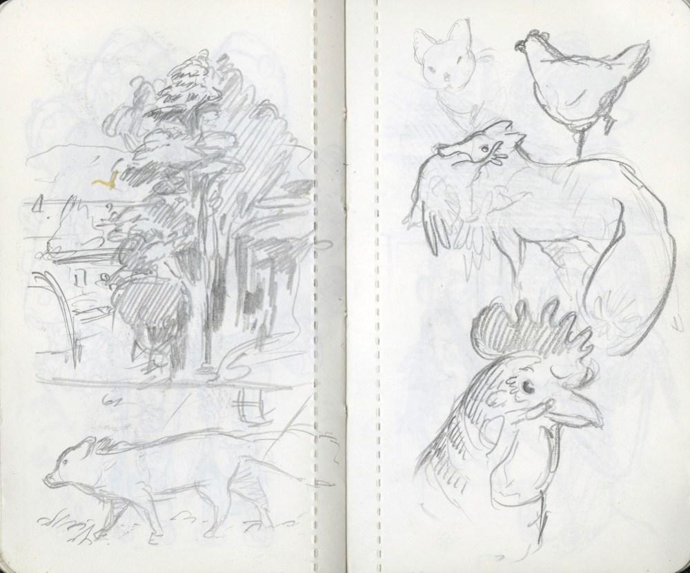 dead poultry