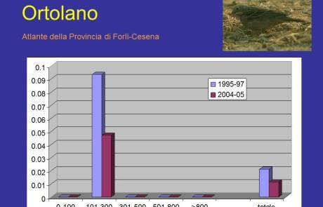 Trend Ortolano