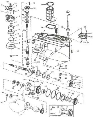 Outboard Motor Parts Diagram  impremedia