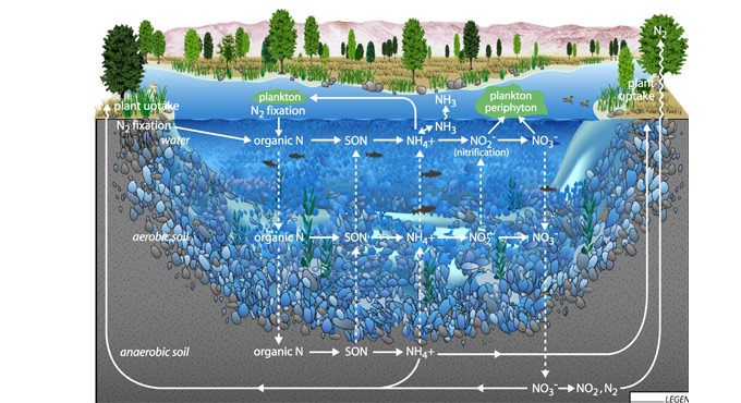 water quality diagram