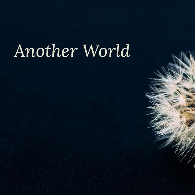 Another World: The Things We Thought Were Beautiful poetry book