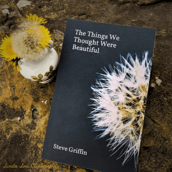 The Things We Thought Were Beautiful Poetry Book