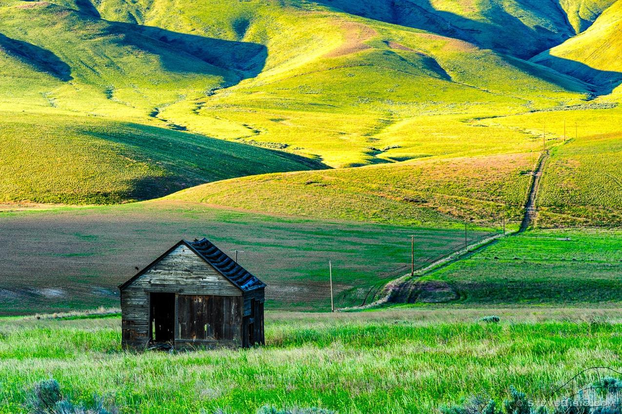 Photography Project: Abandoned Farm, Yakima County, Washington, 2013