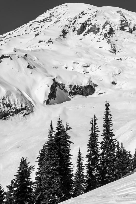 A black and white landscape photograph of a Winter alpine scene near Paradise at Mount Rainier National Park, Washington