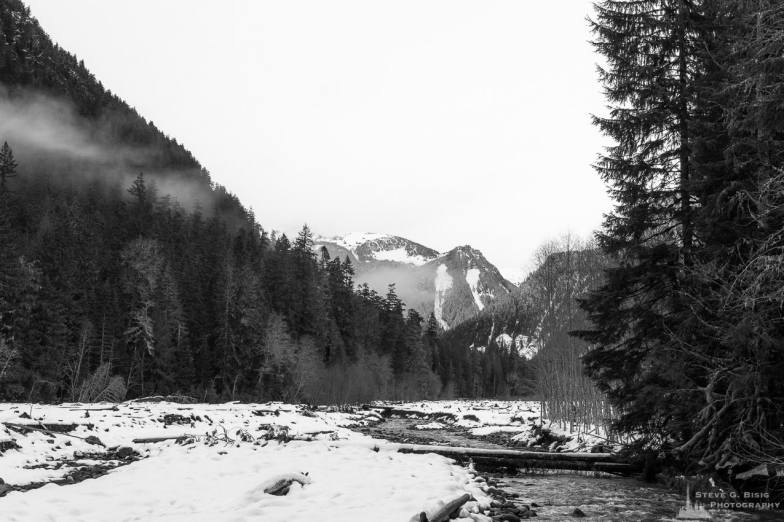 A black and white photograph of the Winter scenes of the Carbon River Valley at Mount Rainier National Park, Washington.
