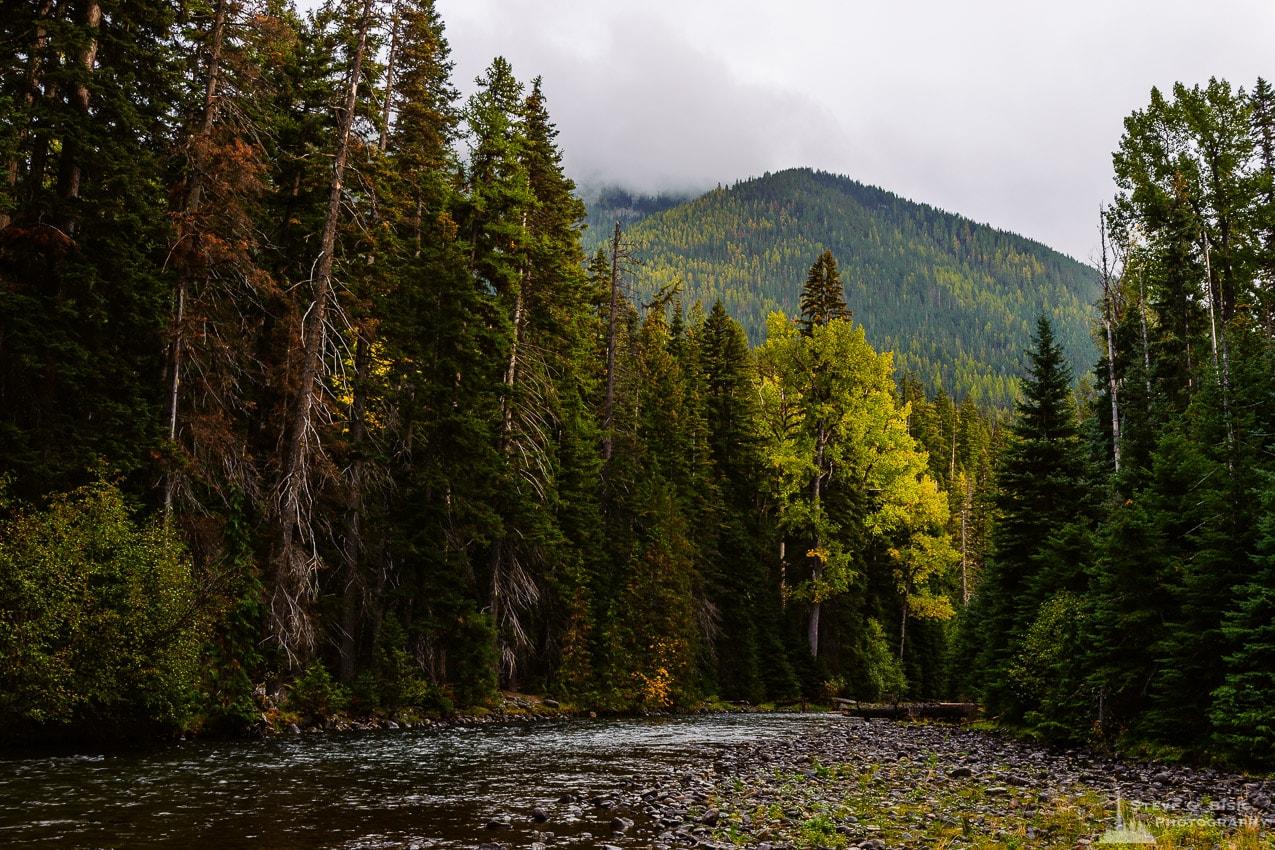 latvian autumn forest river - photo #29