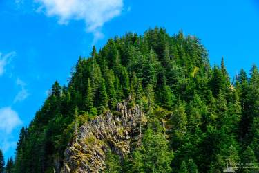 A landscape photograph of a forested bluff along the ridgeline of Lookout Mountain in the Gifford Pinchot National Forest in Lewis County, Washington.