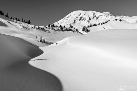 A black and white landscape photograph of shadows in the snow created by a creekbed meandering upwards towards Mount Rainier. This image was captured on a sunny winter day in the Paradise area of Mount Rainier National Park, Washington.