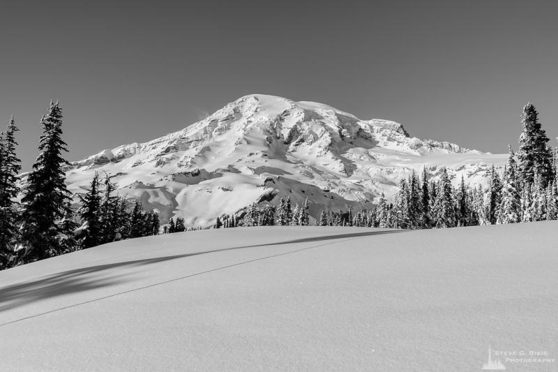 A black and white landscape photograph of Mount Rainier as viewed from the snow-covered mountain meadows, captured on a sunny winter day in the Paradise area of Mount Rainier National Park, Washington.