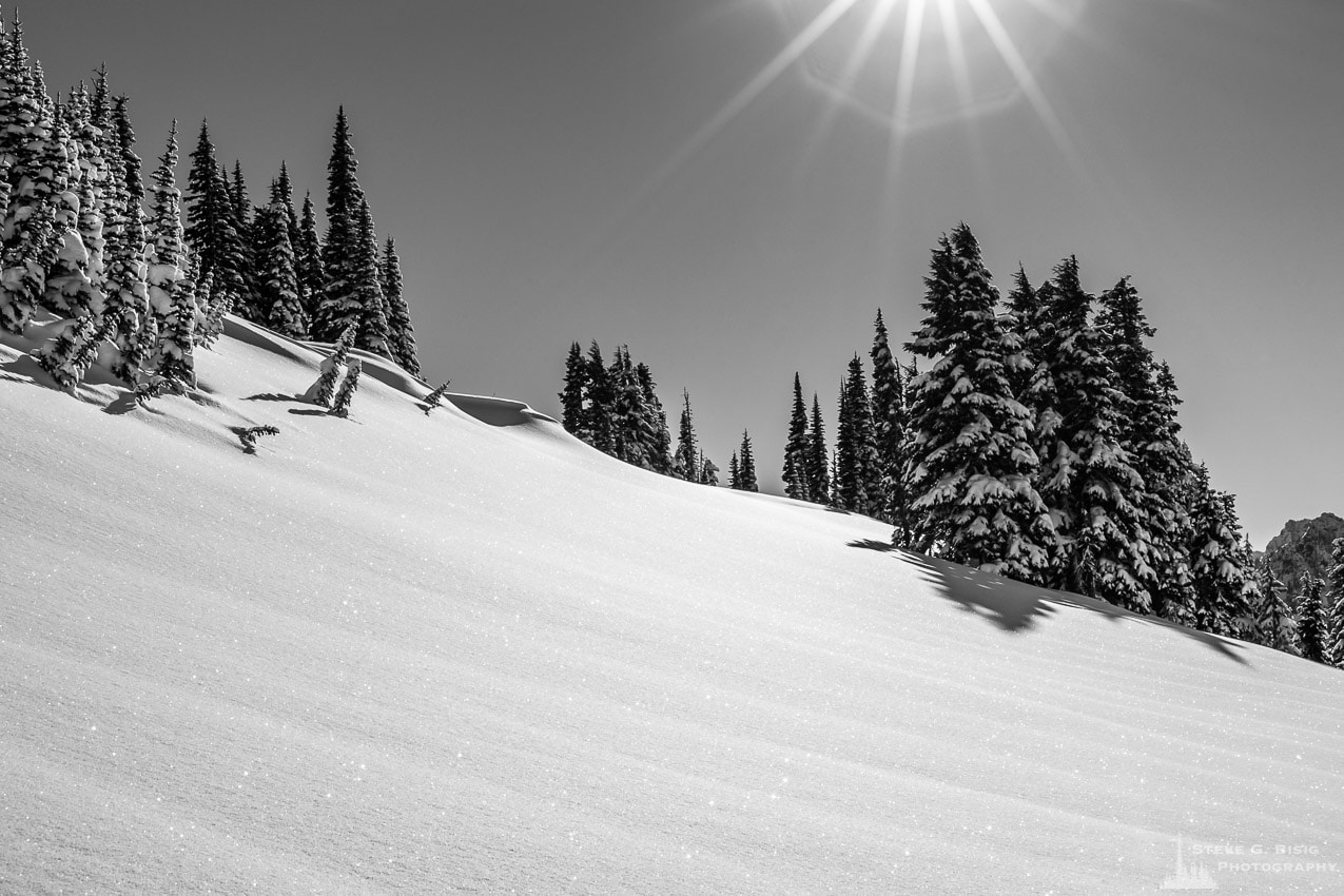 Sunny Winter Day, Paradise, Mount Rainier, Washington, 2017