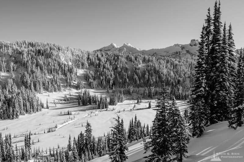 A black and white landscape photograph of the snow-covered lower Paradise River Valley captured on a sunny winter day in the Paradise area of Mount Rainier National Park, Washington.