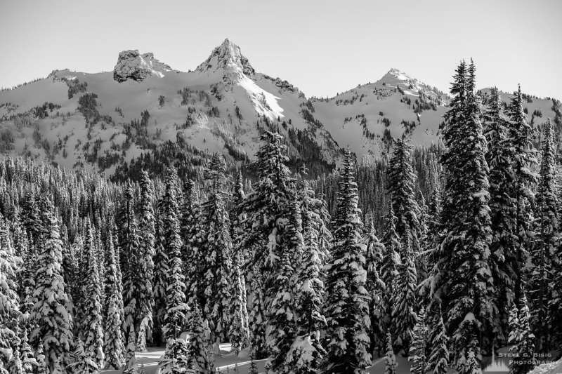 A black and white Pacific Northwest landscape photograph of the winter forest and a snow-covered Tatoosh Mountain Range (featuring The Castle, Pinnacle Peak and Plummer Peak) captured on a sunny winter day in the Paradise area of Mount Rainier National Park, Washington.