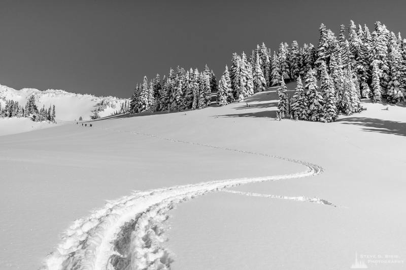 A black and white Pacific Northwest landscape photograph of a ski/snowshoe trail captured on a sunny winter day in the Paradise area of Mount Rainier National Park, Washington.