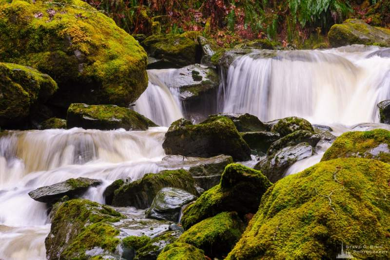 A landscape photograph of a series of small waterfalls captured on a rainy winter day along O'Toole Creek in Skagit County, Washington.