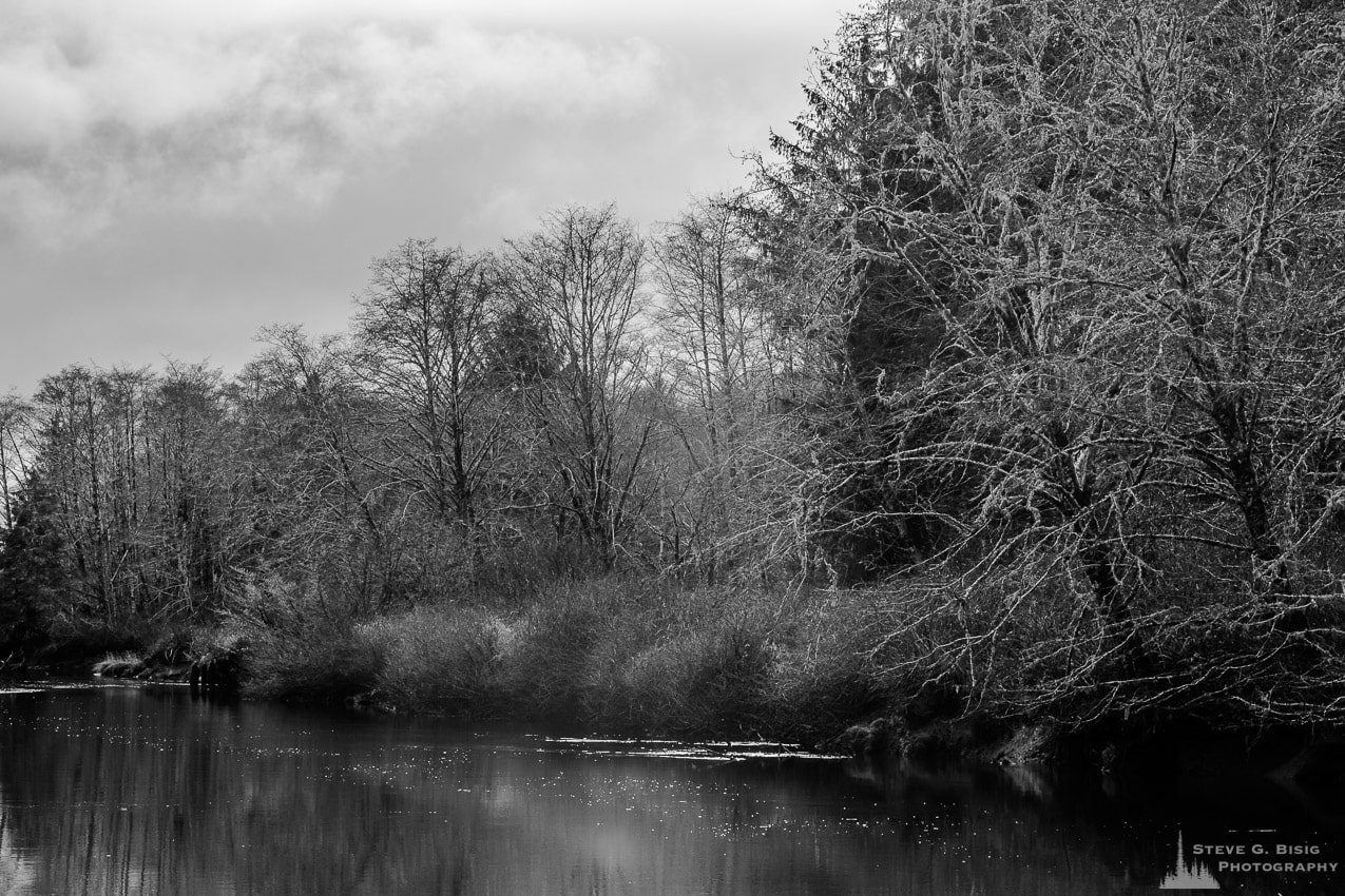 Humptulips River, Washington, Winter 2017