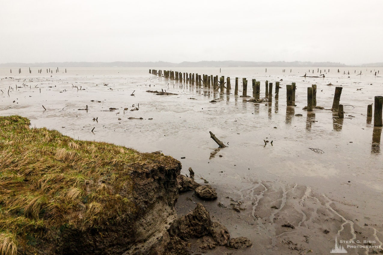 Mudflats at Low Tide, Grays Harbor, Washington, Winter 2017