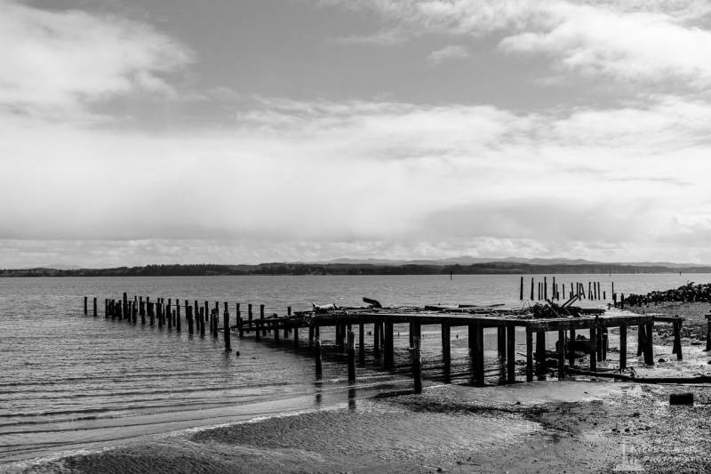 A black and white rural landscape photograph of an old dilapidated dock in Tokeland, Washington.