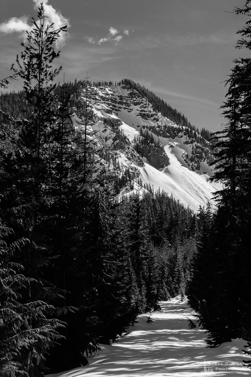 Snow-Covered Hogback Ridge from FR1284, White Pass, Washington, Spring 2017