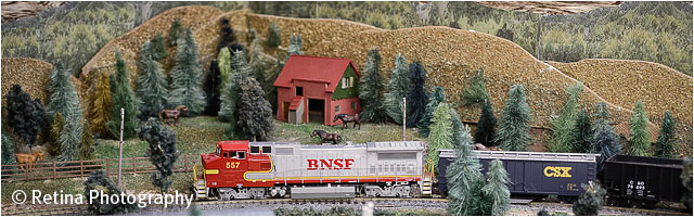 Model Train Layout Detail View 03