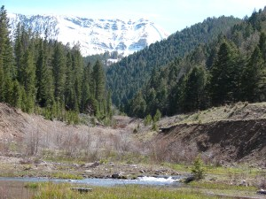 Late Spring Snowpack
