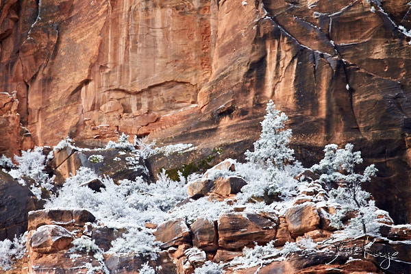 Lady Mountain, Zion National Park, (c) Photo by Steve Kaye, in photo article: Zion National Park