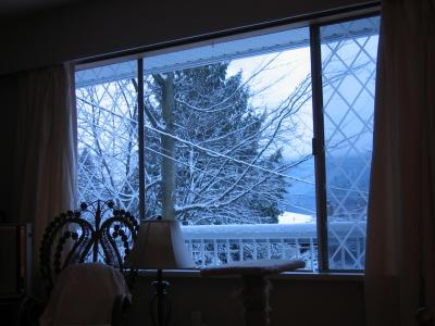 Our living room window