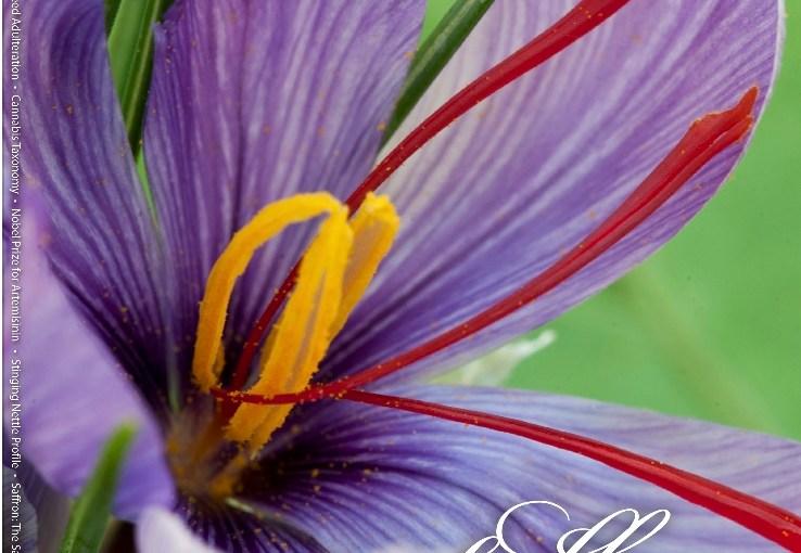 HerbalGram Celebrates 35 Years of Publication