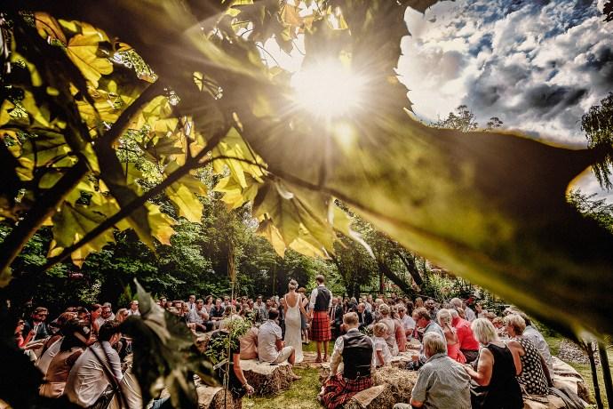 wedding through the trees