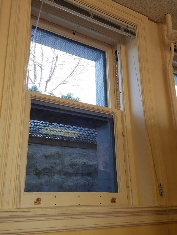 Carnegie Mellon Library Window Restoration 4