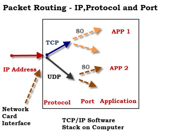 TCP vs UDP -What's The Difference?