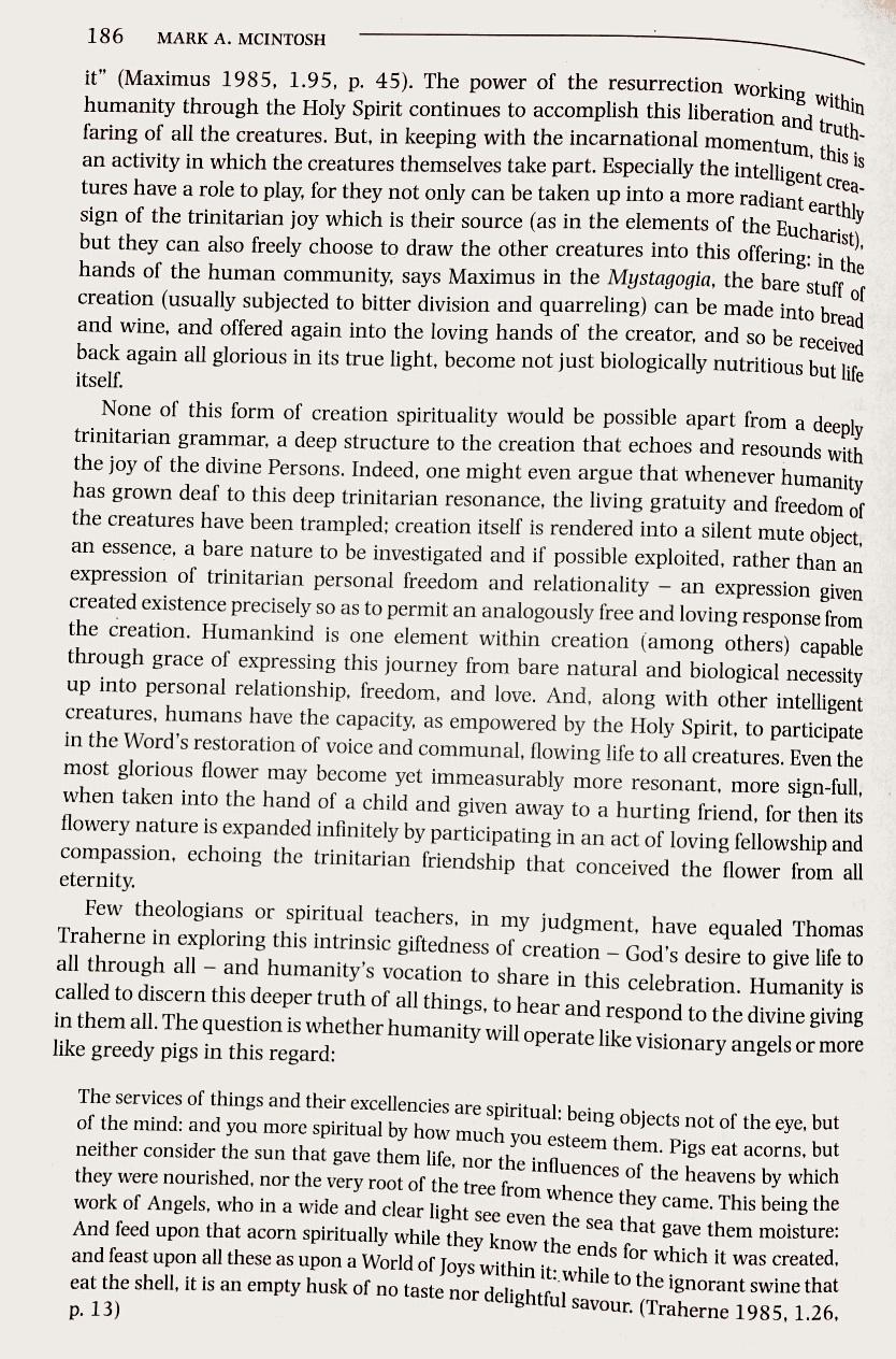 A Trinitarian Perspective 10
