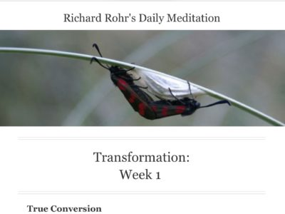 Richard Rohr conversion