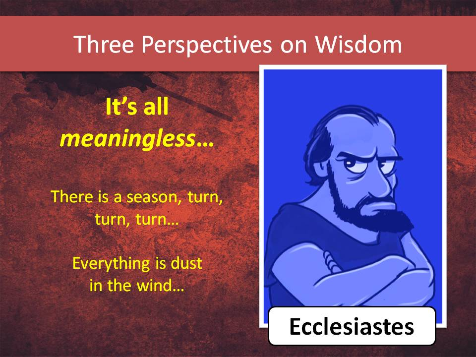 Ecclesiastes is the middle-aged cynic. He tried Proverbs' way, and it doesn't always work.