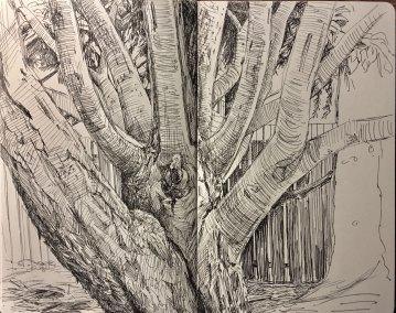 summer2018-sketch-2