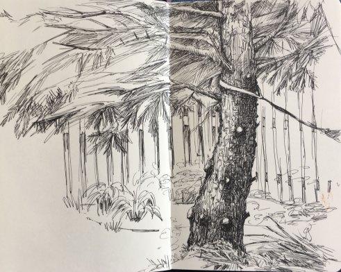summer2018-sketch-5