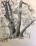summer2018-sketch-8