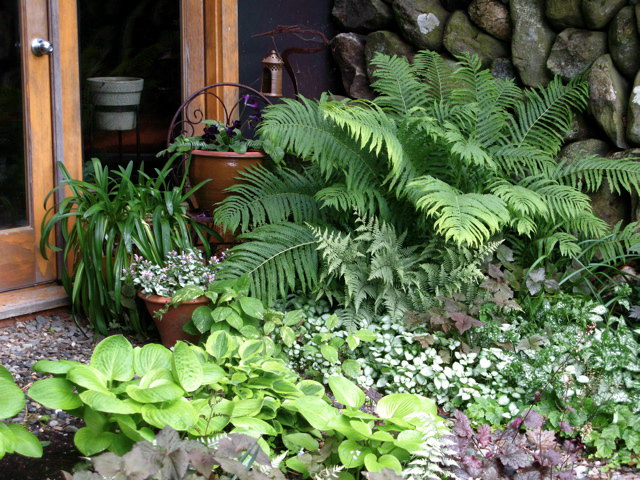 Better Looking with Backyard Landscaping Ideas - Interior ... on Shady Yard Ideas  id=44800