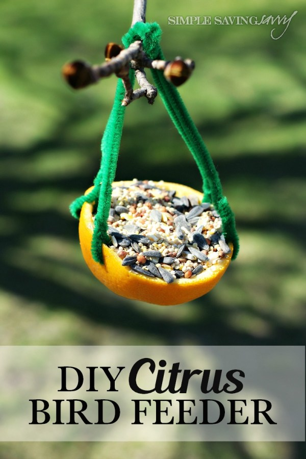 DIY Citrus Bird Feeder from Simple Saving Savvy
