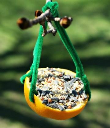 DIY Citrus Bird Feeder