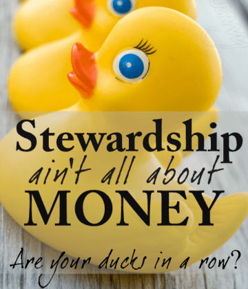 Stewardship Ain't All About Money