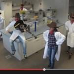 linedancing bacteria