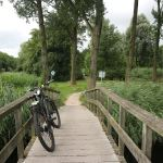 Stewart Innes Ghost Bikes, Cyprus, Holland, United Kingdon