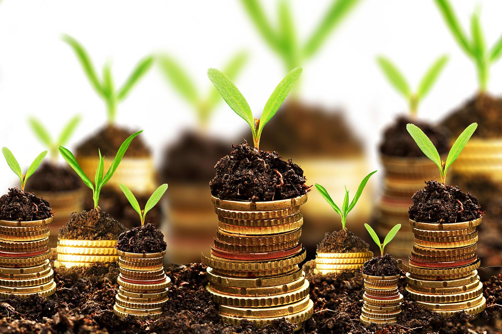 Hvordan gør jeg min samlede portefølje etisk og bæredygtig?