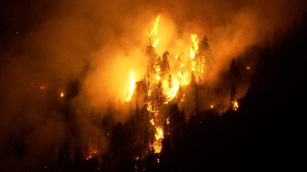 Pine Valley Saddle Fire increases to 1,540 acres, reaching ...